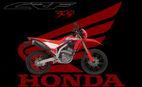 2021 Honda CRF300 L