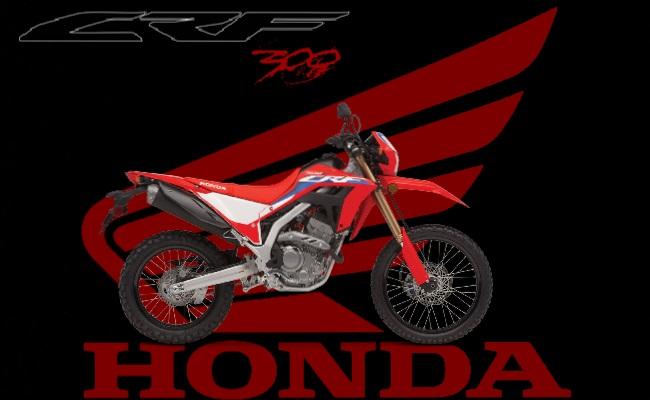 Honda Crf 300 2021